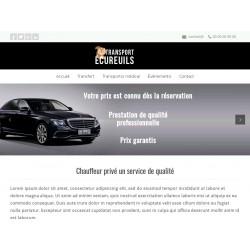 Site vitrine sur modele existant + logo